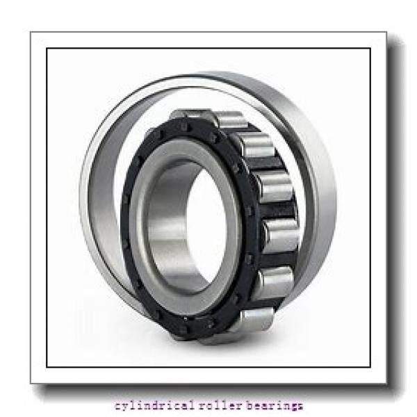 2.559 Inch   65 Millimeter x 5.512 Inch   140 Millimeter x 1.299 Inch   33 Millimeter  CONSOLIDATED BEARING NUP-313E C/3  Cylindrical Roller Bearings #1 image